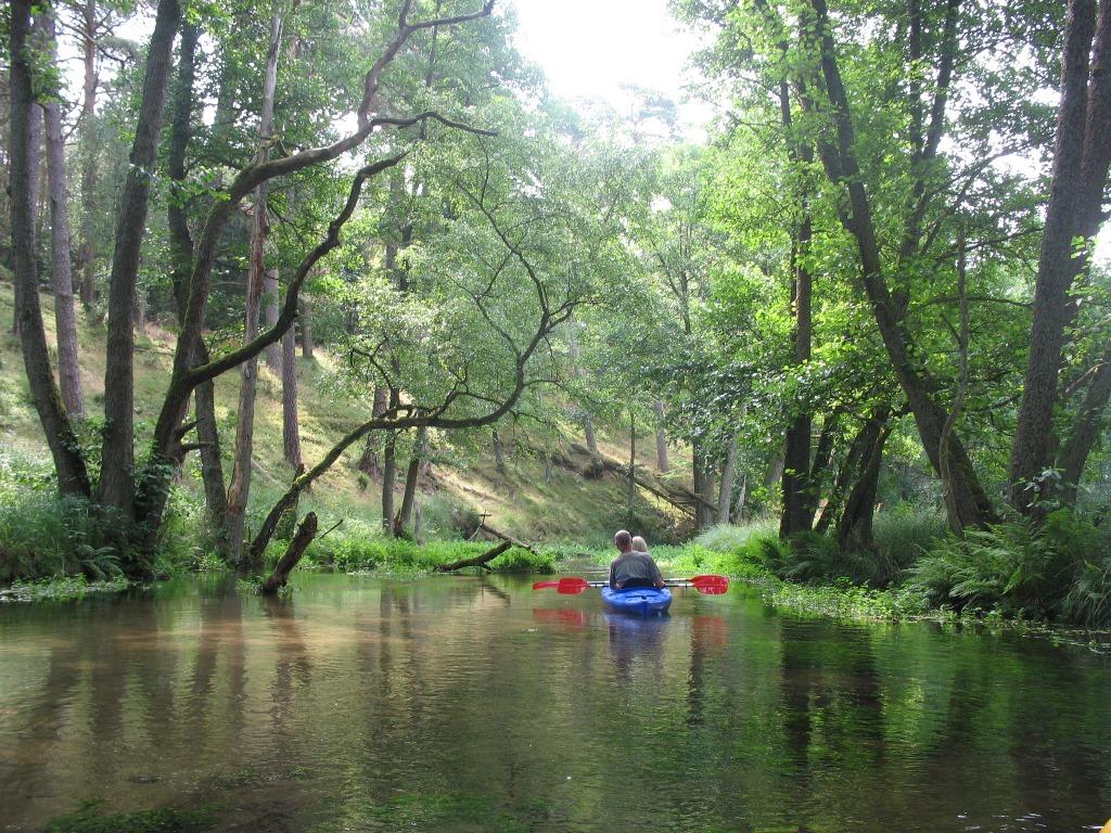 Spływ kajakowy rzeką Ruda